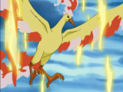 Pokemon Legendarios[Moltres]