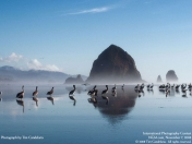 70 Wallpapers HD de National Geographic
