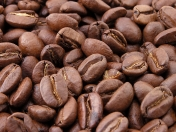 Cafe: Beneficios y Contraindicaciones.