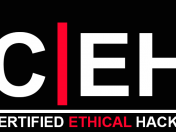 Certified Ethical Hacker v8 Español