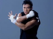 Donnie Yen un señor actor del arte marcial