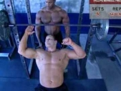 videos de entrenamiento muscle & fitness DVD