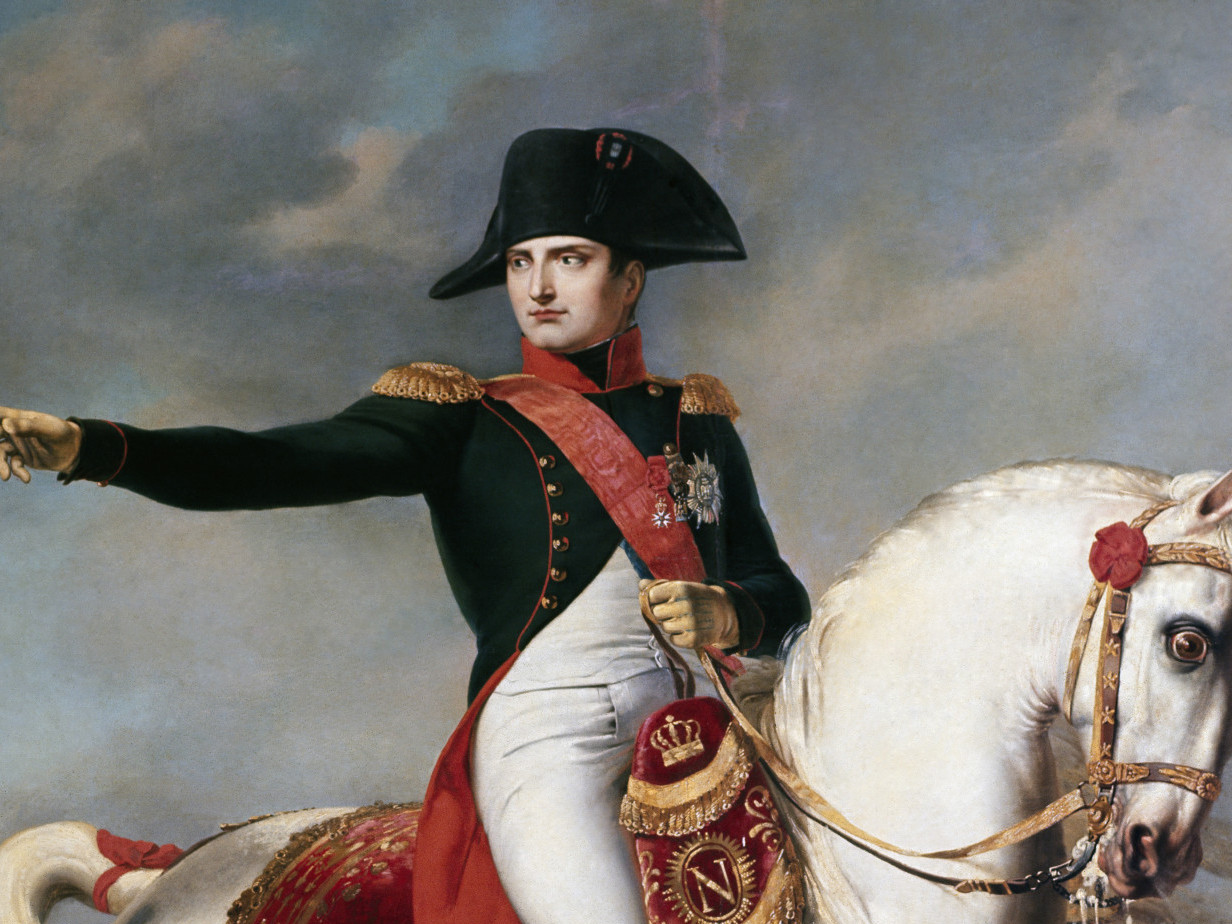 napoleon info Napoleon considered himself charlemagne's heir, but it was an heir of his own he needed most, a son to inherit his empire he reluctantly divorced josephine in 1810 and married marie-louise.