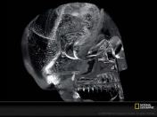 La Calavera de Cristal (documental Nat.Geo. en esp.)
