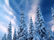 Wallpapers HD invierno y nieve - Parte 10