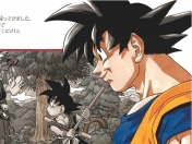30 años de Dragon Ball